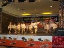 Fotografii Voinicelul 2010_140