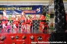 Fotografii Voinicelul 2011_198