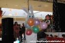 Fotografii Voinicelul 2011_271