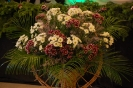 Fotografii Voinicelul 2012_108