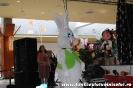 Fotografii Voinicelul 2011_193