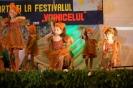 Fotografii Voinicelul 2012_80